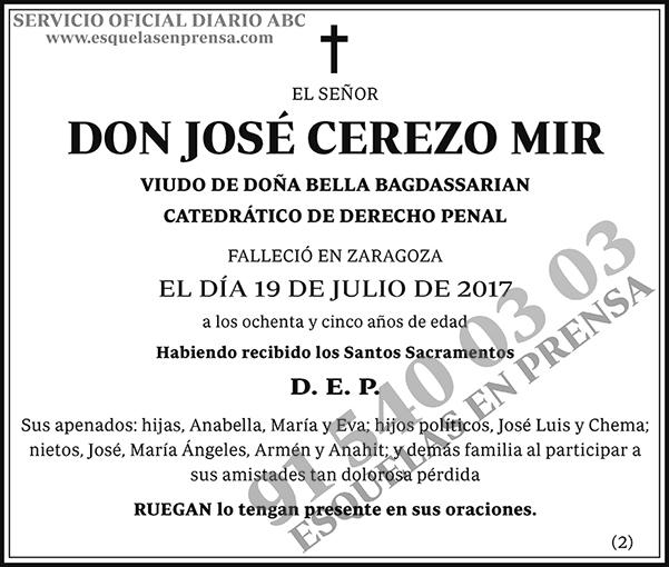 José Cerezo Mir